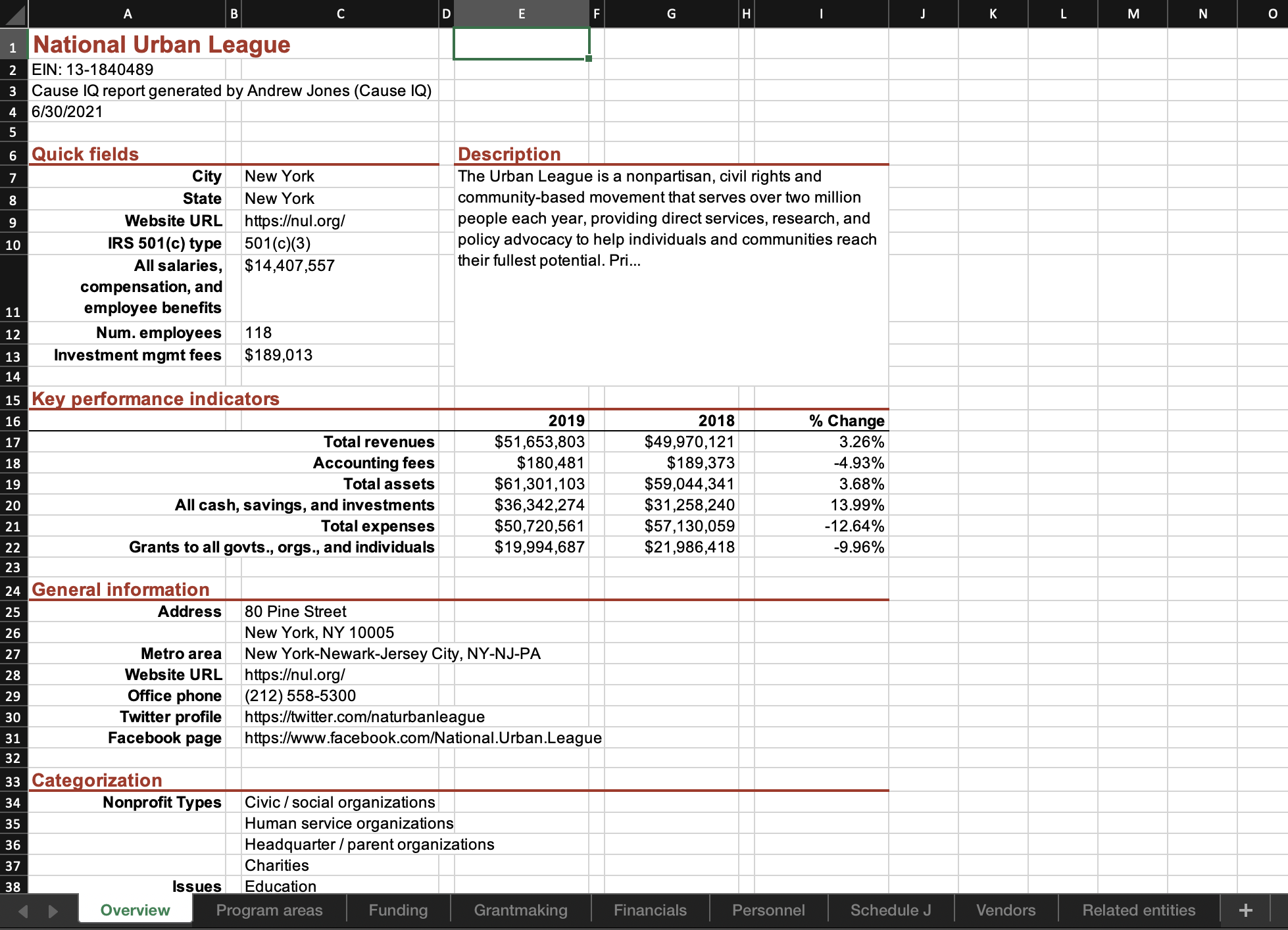 Organization Excel-based reports, screenshot of Excel