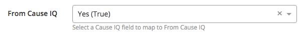 Salesforce boolean field mapping